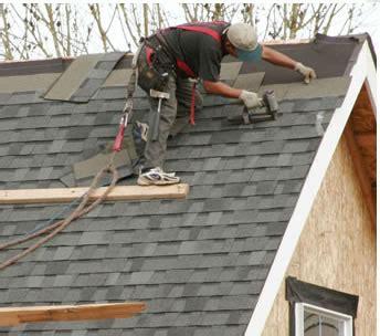 rain tree roofing services burlington oakville mississauga