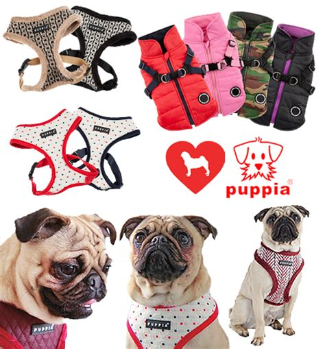 clothes for pugs uk i pugs puppia puppia soft harness pug sweatshirts catseye pug bags