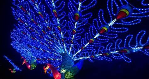 lights next next chiswick house magical lantern light festival 2017