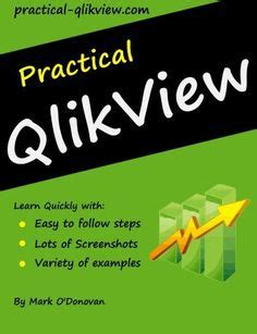 qlikview tutorial for beginners pdf dashboard exles dashboards and products on pinterest