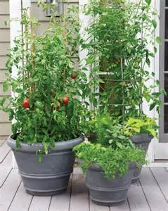 Small Space Garden Ideas Martha Stewart Martha Stewart Vegetable Garden