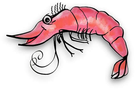shrimp clip free shrimp gifs shrimp animations clipart