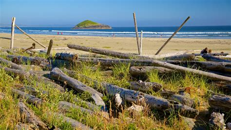 Ucluelet Holidays: Cheap Ucluelet Holiday Packages & Deals Expedia.com.au