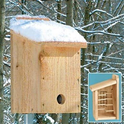 How To Keep Birds And Squirrels Out Of Fruit Trees - 1000 ideas about bird house crafts on pinterest modern birdhouses birdhouses and bird feeders