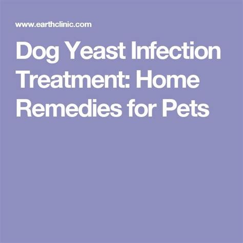 the 25 best yeast infection treatment ideas on