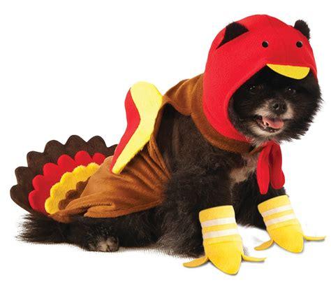 turkey dogs rubie s turkey costume chihuahua kingdom