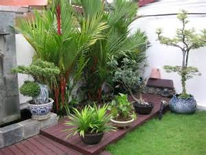 Plant Ideas For Backyard Outdoor Tropical Plants For Small Garden Design With Wooden Deck How To Plan A Small