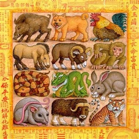 new year animal tiger the new year animal order starts with the rat to the ox