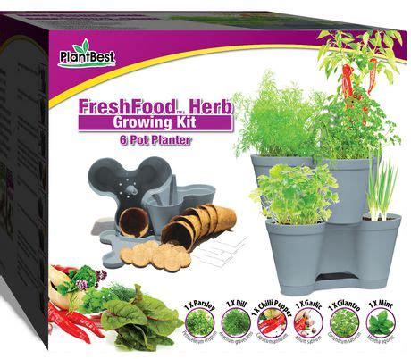 freshfood herb growing kit walmart canada
