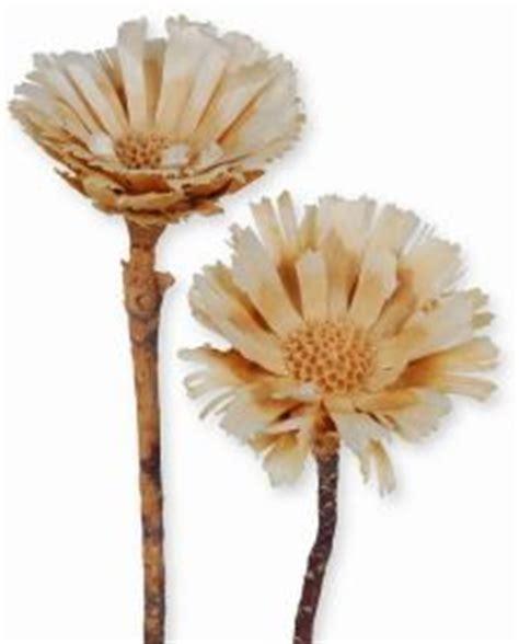 winter bettdecken günstig trockenblumen deko im versand shop kaufen