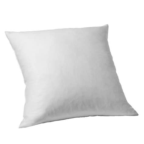 24 In Pillow Insert by Decorative Pillow Insert 24 Quot Sq West Elm