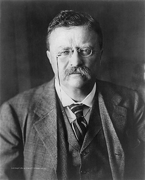 presidency of theodore roosevelt wikipedia the free president theodore roosevelt portrait photo print for sale