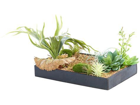 pflanzen deko carlo vertikaler wandgarten mit deko pflanzen