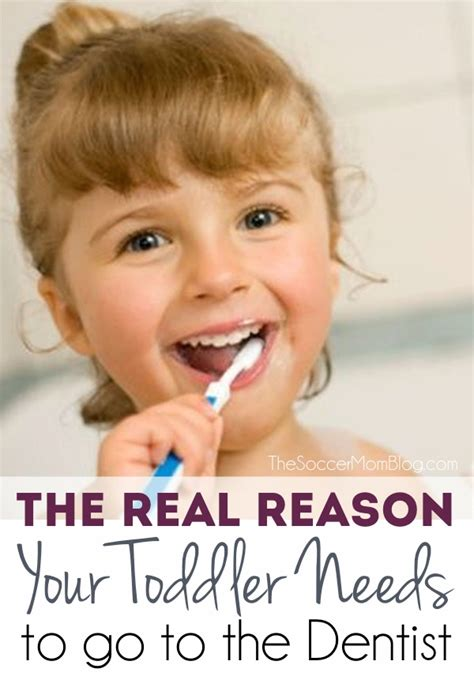 Why Get An Mba When Going To Dental School by Your Baby S Dentist Visit Toddler Tooth Care Tips