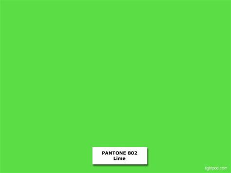 pantone green neon yellow pantone color images