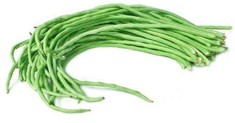 2 Biji Benih Kacang Panjang Biji Hitam kandungan nutrisi dan manfaat kacang panjang