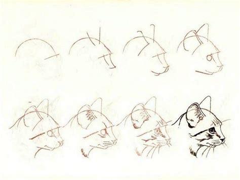 Кошки мышки рисунки карандашом