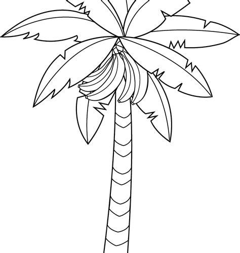 banana leaf coloring page 46 banana tree clip art banana tree clipart banana tree