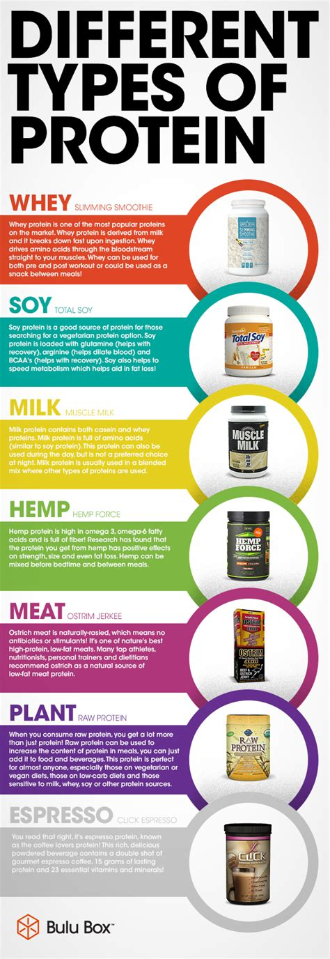 6 Types Of Diet Which Ones Right For You by Proteins Different Types Of Protein Http Www