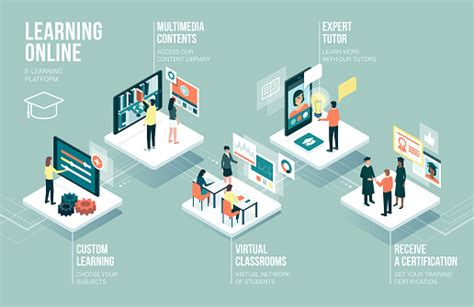 education   learning infographic stock