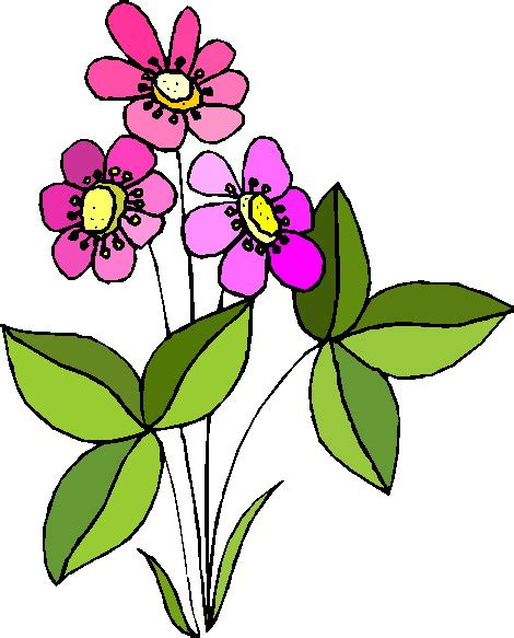 fiori clip clipart fiori c165 clipart della natura