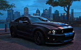 ford mustang shelby cobra gt500 snake at in