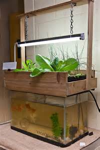 home aquaponics the starters guide aquaponics plans for your own home