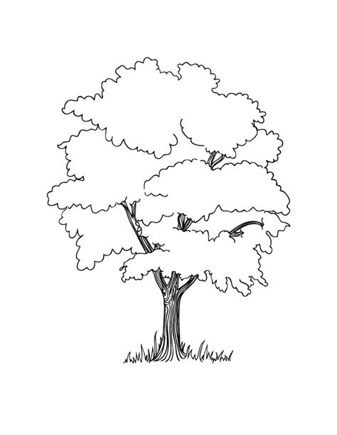 Tree Coloring Pages With Roots Pinterest Tree Coloring Colouring Page Of Tree