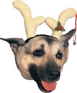 Details About Dog Christmas Fancy Dress » Ideas Home Design