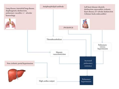 Pch Disease - pulmonary arterial hypertension in systemic lupus erythematosus current status and