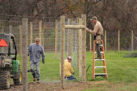 how to install a farm deer fencing installed at freeville farm