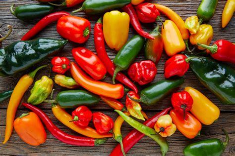 come cucinare i peperoni cucinare i peperoni le variet 224 e le ricette per portarli