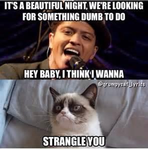 Singing Cat Meme - best 25 grumpy quotes ideas on pinterest grumpy meme