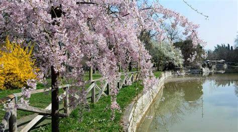 giardini margherita bologna giardini margherita di bologna