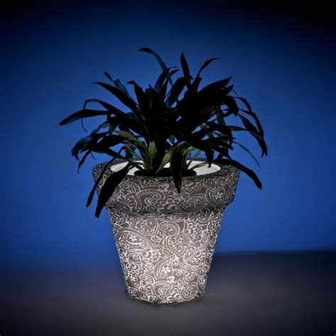 Glowing Planter Pots by Translucent Glowing Pots And Planters Vazon By Rolotuxe Digsdigs
