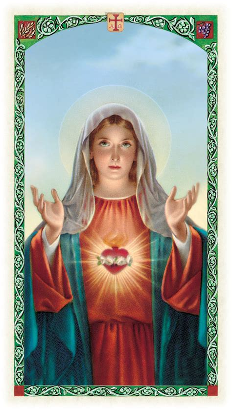 imagenes de la virgen maria sagrado corazon de maria pastorcitos al servicio