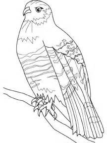 Dessins Gratuits à Colorier - Coloriage Faucon à imprimer