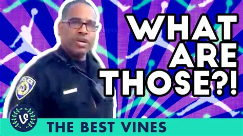 what are what are those best vine trends of 2015 best of