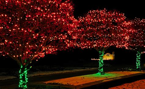 christmas lights red and green photograph by leeann