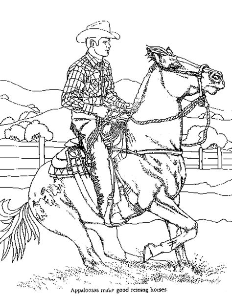 detailed picture of reining horse and rider