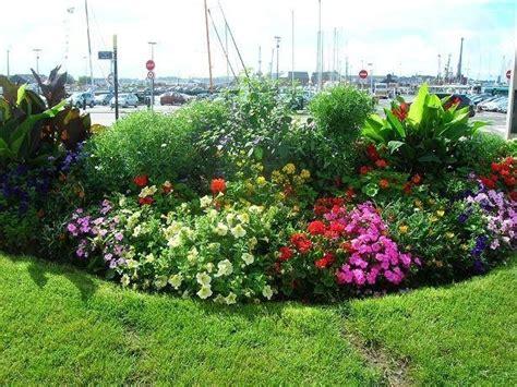 bordure perenni fiorite realizzare aiuole da giardino quale giardino