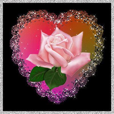 imagenes bellas brillantes en movimiento cuadro de una de una rosa muy hermosa con estrellas brillantes