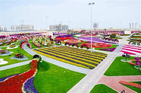 florist jobs in dubai dubai miracle garden in pictures latest job