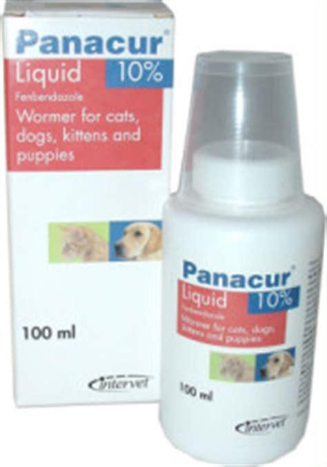 panacur liquid for dogs panacur liquid expresschemist co uk buy