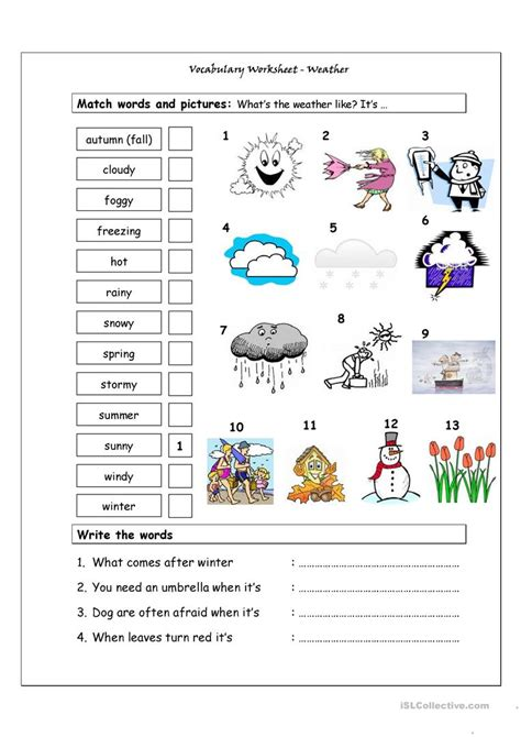 Patterns In Nature Topic Test Answers | vocabulary matching worksheet weather worksheet free