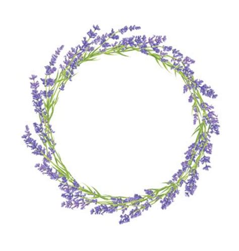 circle of lavender flowers vector by lidiebug on