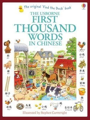 first thousand words in first thousand words in chinese heather amery 9781409570387