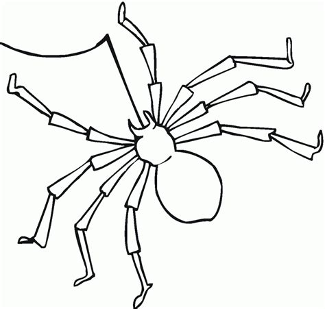 coloring page of a spider free printable spider coloring pages for kids