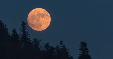 One The Moon Essay by Photo Essay A Look At The Carolina Moon Our State Magazine