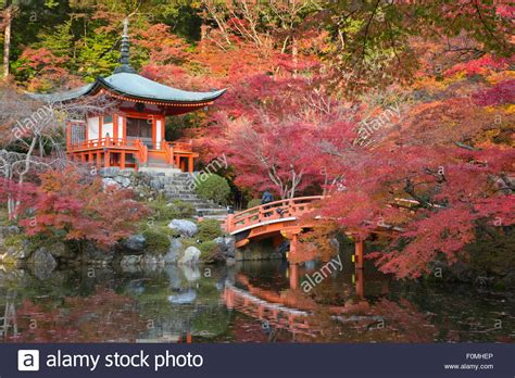Hello Limited Kyoto Japan Orange japanese temple garden in autumn daigoji temple kyoto japan asia stock photo royalty free